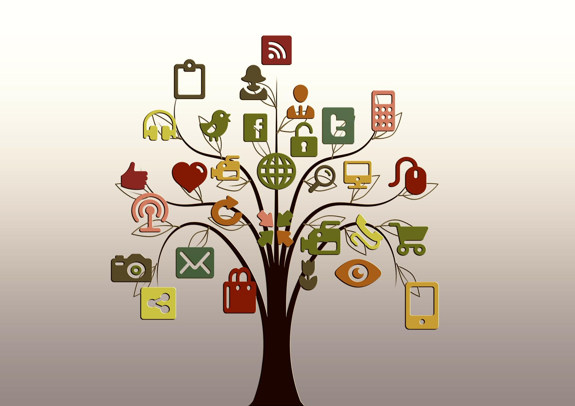 tree, social media, twitter